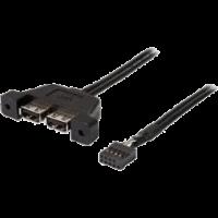 ASRock USB 2.0 9-Pin Header auf 2x USB 2.0 Typ-A 50 cm Adapterkabel schwarz (DESKMINI 2XUSB2.0 CABLE
